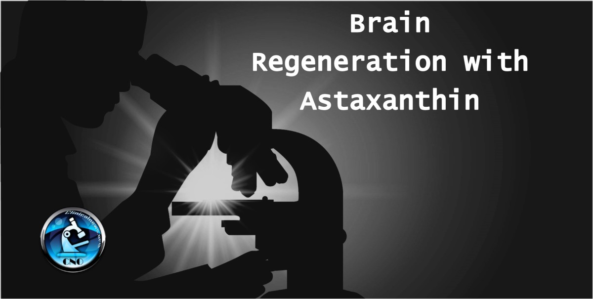 Brain regeneration with Astaxanthin