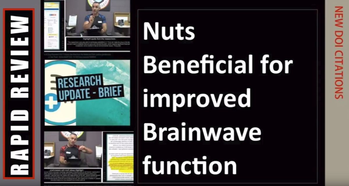 Nuts Beneficial for improved Brainwave function